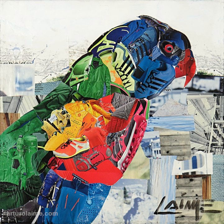 Sittich by Arturo Laime