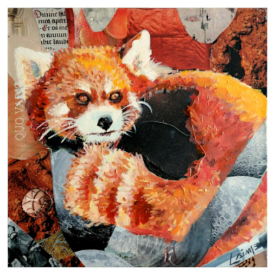 red panda mixed media on canvas