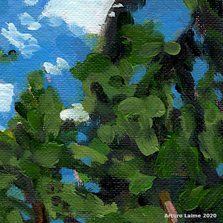 Hiker in the woods detail03